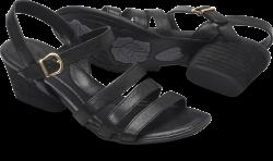 LaSal in color Black