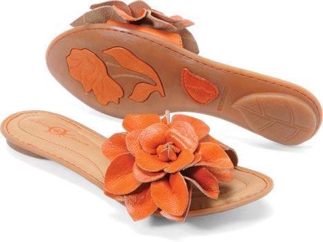 Orange Born Crown Albright