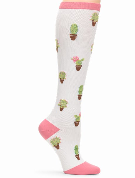 Compression Socks shown in Succulents