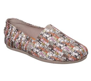 Multi Natural Skechers BOBS Plush - School's Out