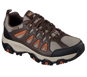 Orange Brown Skechers Terrabite