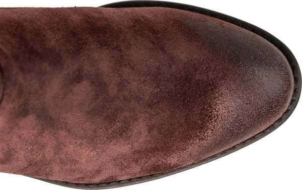 Image of the Vasanti shoe from the top