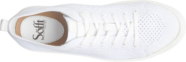 Image of the Somers-Knit shoe from the top
