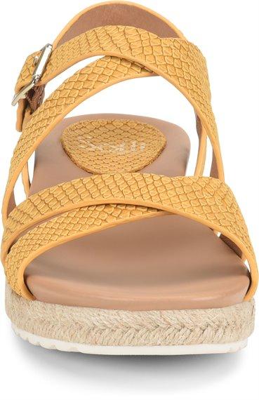 Image of the Beechwood shoe toe