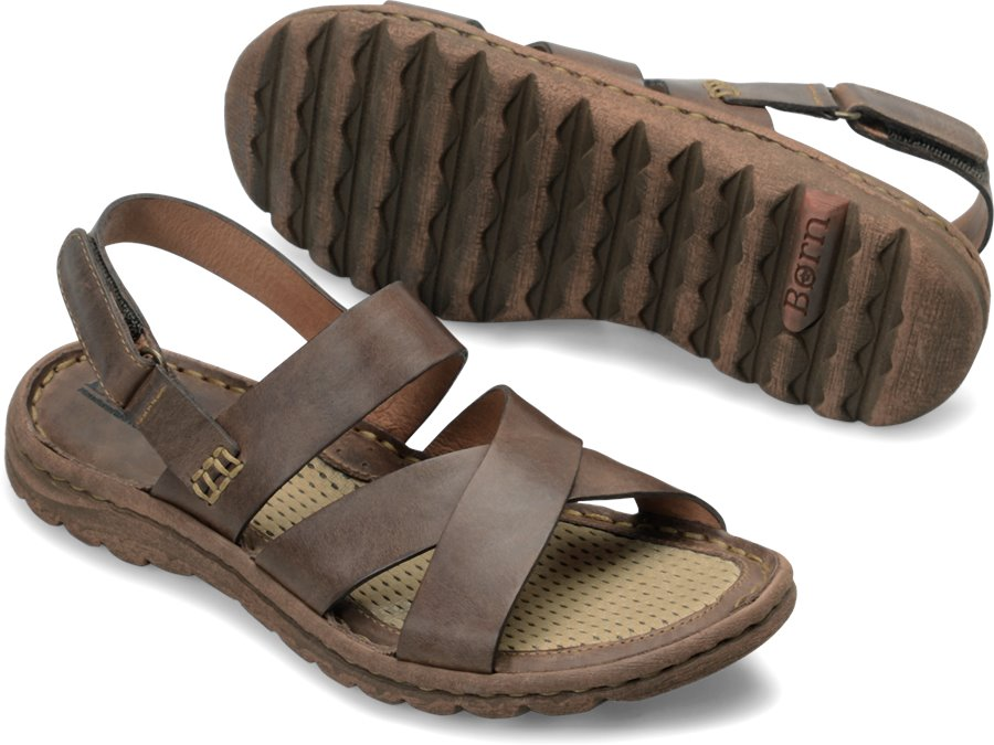Born Estes : Dark Brown - Womens